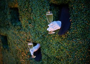champagne through green wall